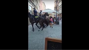 Interwencja policji konnej w Katowicach. Trwają poszukiwania mężczyzny