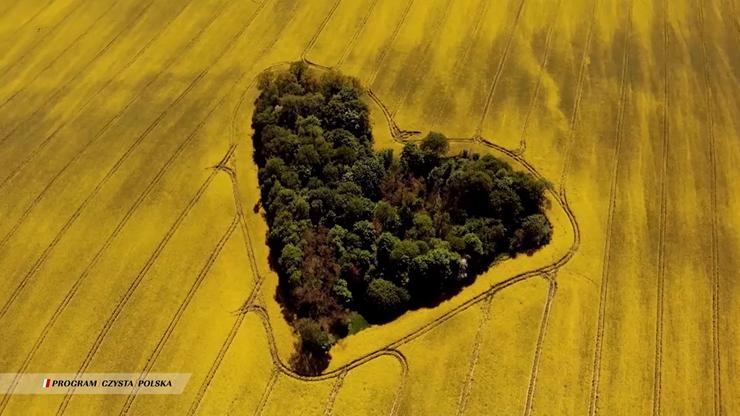 50. Dzień Ziemi. Program Czysta Polska zachęca: #ZaczynamOdSiebie